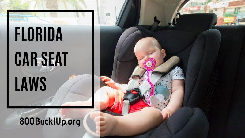 Florida Car Seat Laws, 4 Year Old Car Seat Law Florida